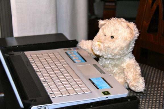 Teddy enjoys reading your comments