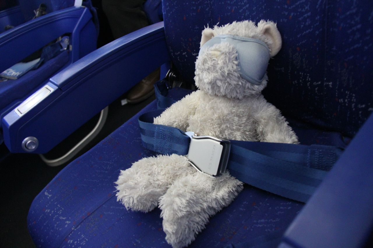 Teddy by plane
