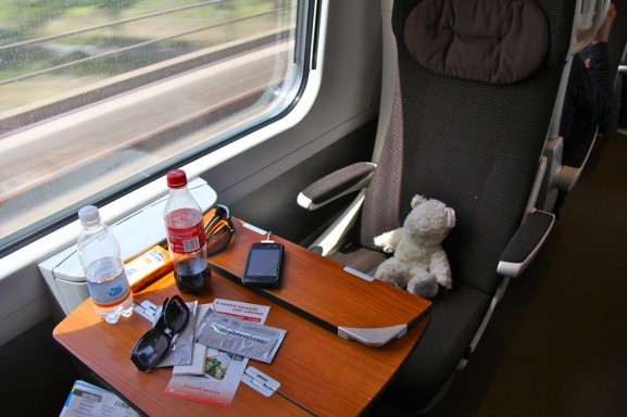 Teddy travels by train
