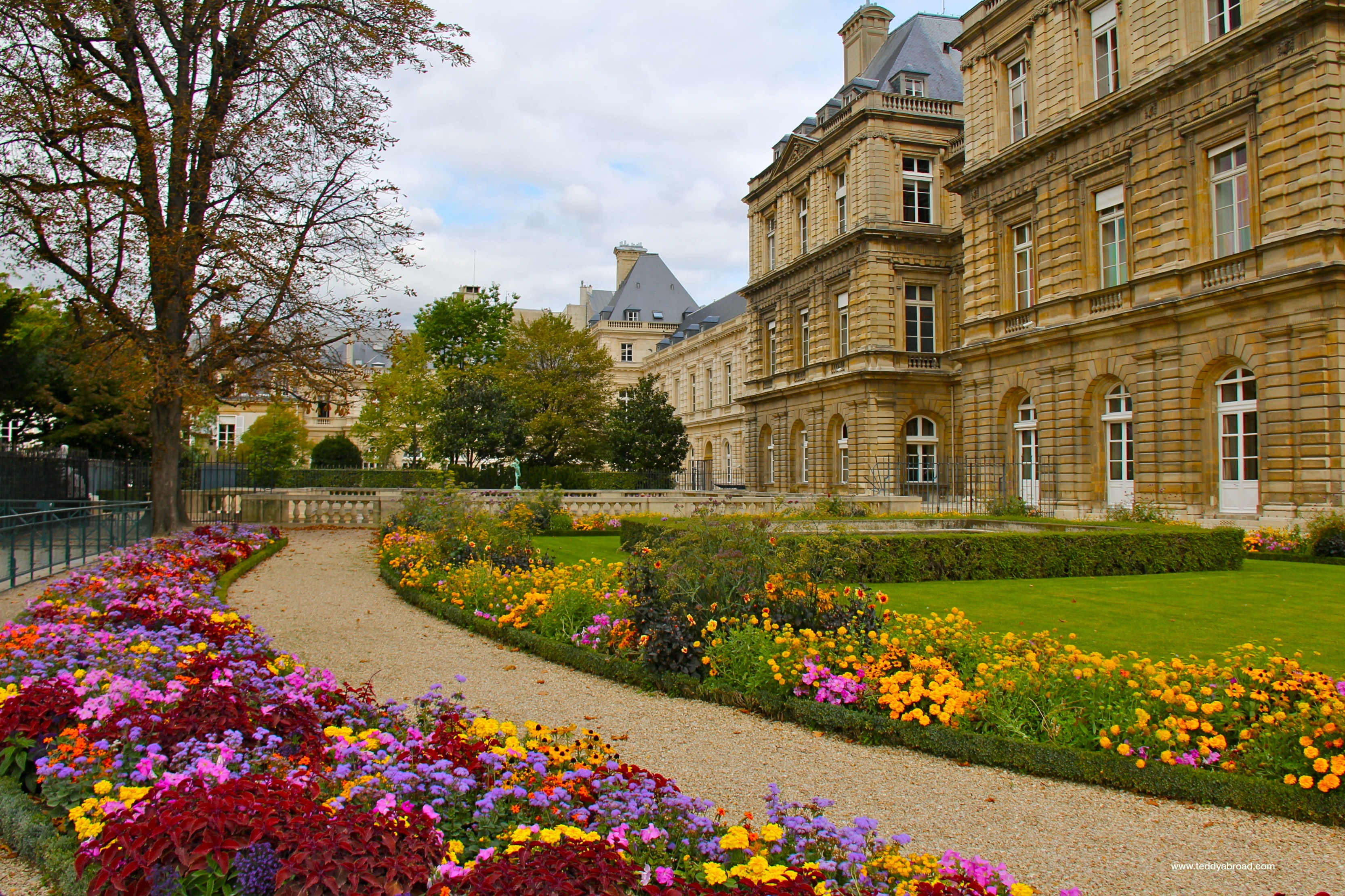 Jardin du luxembourg a teddy abroad for France jardin
