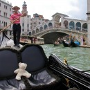 Teddy in Venice