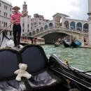 Teddy in Venice